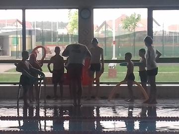 Galeria Wakacje z delfinem - pływanie