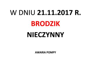 BRODZIK-W-DNIU-21.jpeg